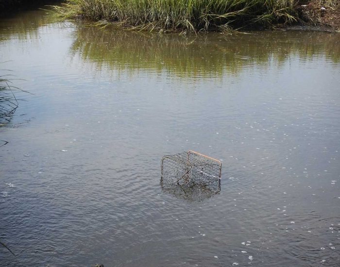 Ghost Trap in the water