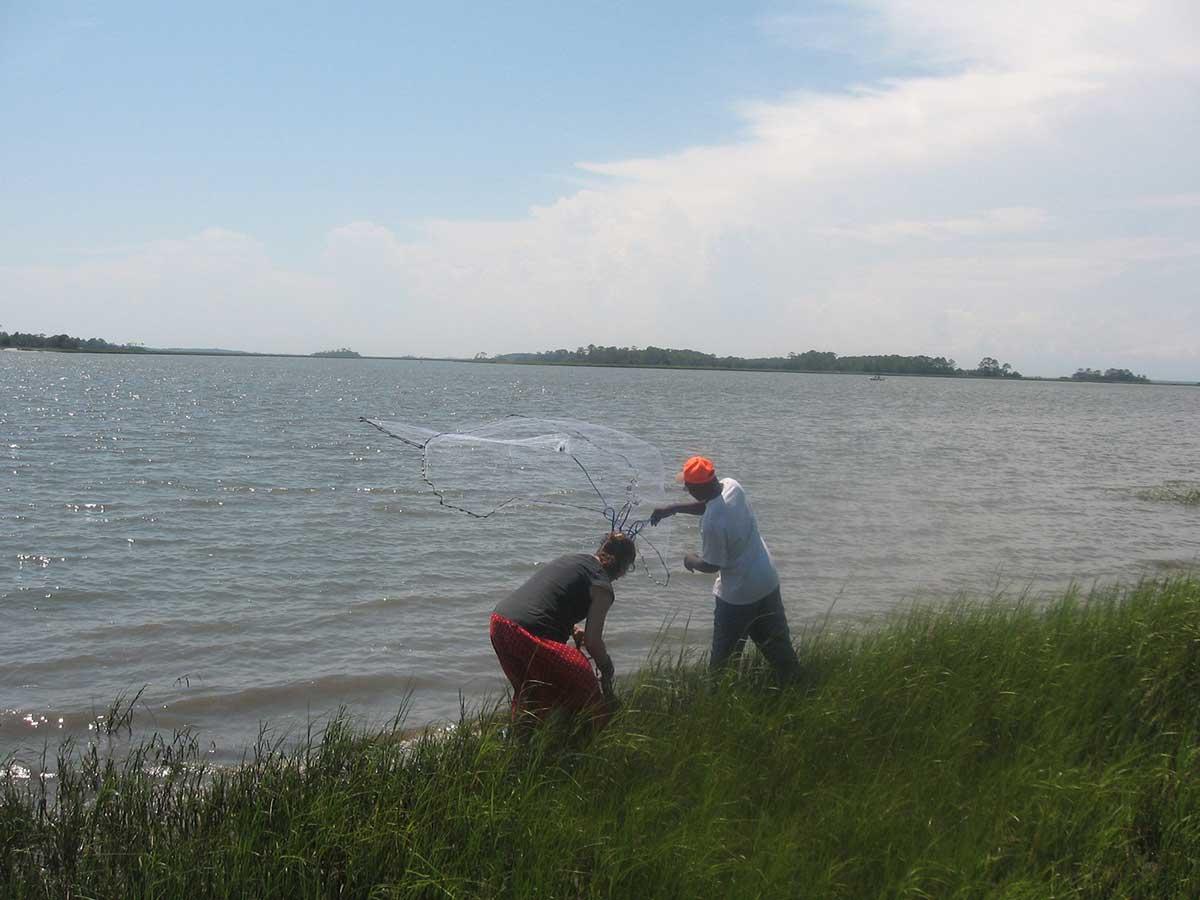 Gullah/Geechee men casting a net